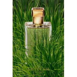 Paul Emilien Vetiver Indien 100ml